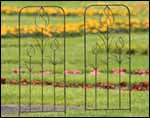 Wrought Iron Small Tulip Trellis - Set of 2