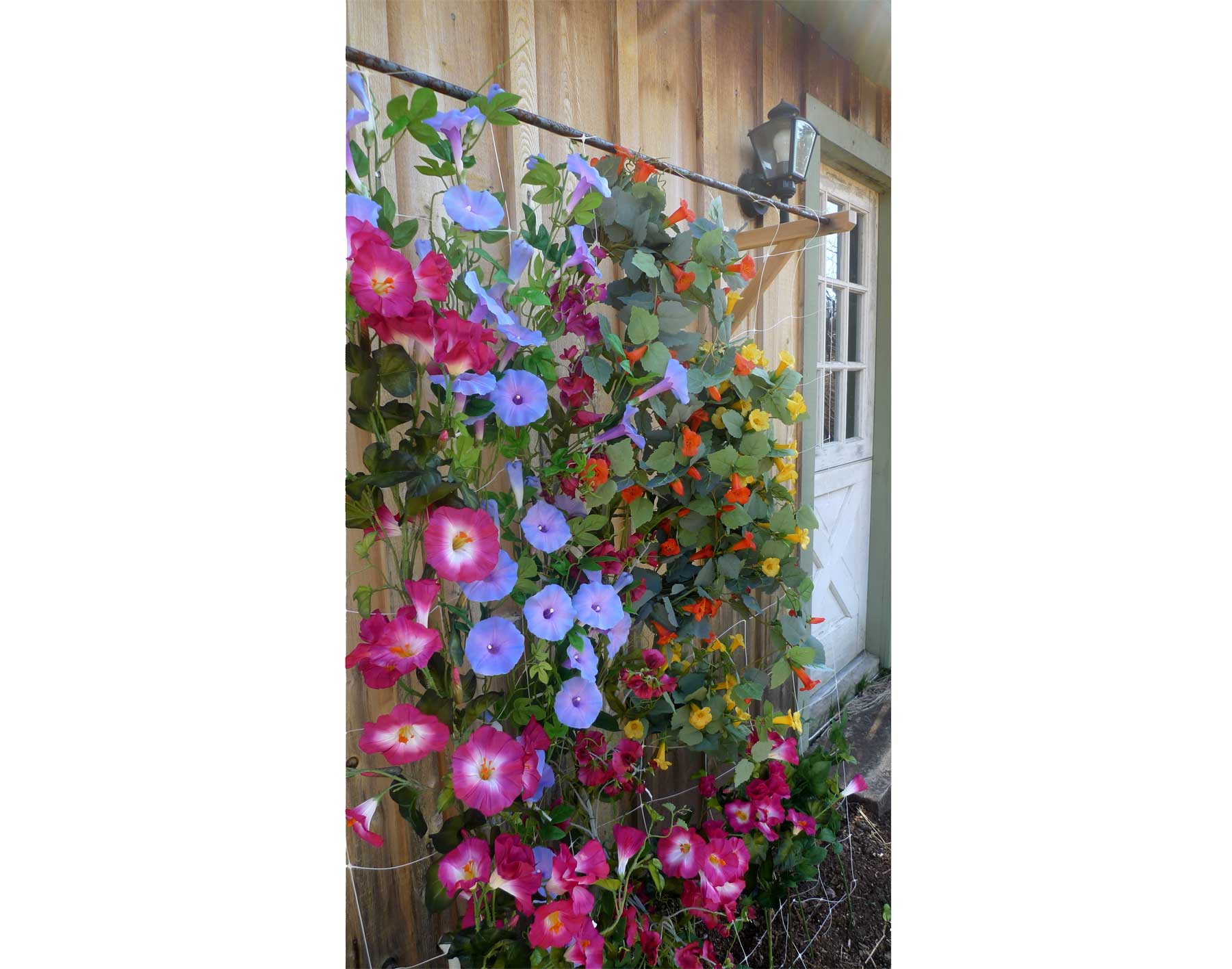 the ideas ewa mberry garden picture diy by trestle trellis of pea in